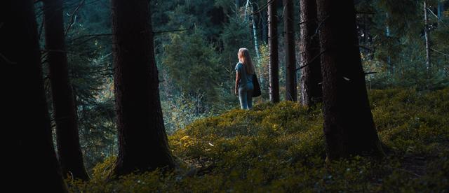 Entspannung und Auszeit im Wald und in der Natur.